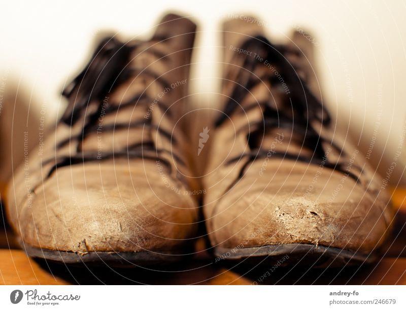 Schuhe. Bisschen abgenutzt. alt braun modern Bekleidung deutlich Stiefel direkt Leder Optimismus Schuhsohle Schuhregal Schnürstiefel