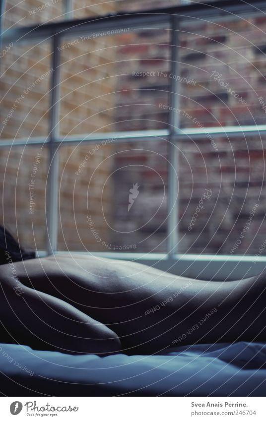 form. maskulin Körper Haut Rücken 1 Mensch 18-30 Jahre Jugendliche Erwachsene Mauer Wand Schlafzimmer Bett Bettlaken Fenster Fensterscheibe liegen dünn kalt
