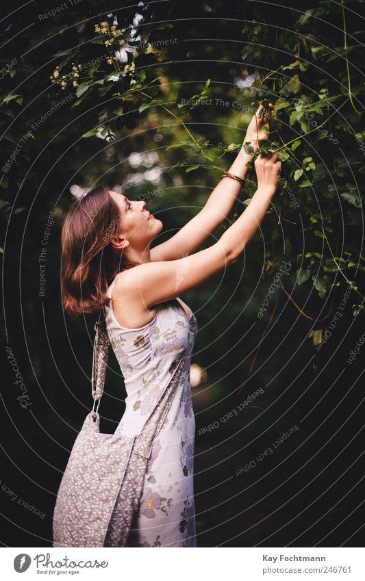 * Lifestyle elegant Glück schön pflücken Spaziergang Freiheit Sommer Mensch feminin Junge Frau Jugendliche 1 18-30 Jahre Erwachsene Natur Pflanze Baum
