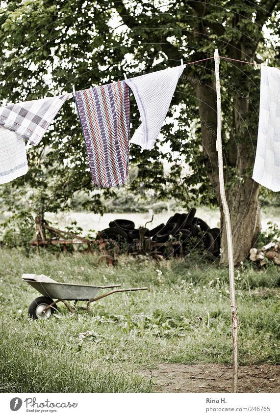 Landleben II Landschaft Pflanze Sommer Baum Wiese hängen authentisch Reinlichkeit Sauberkeit Reinheit Wäsche Wäscheleine trocknen Schubkarre Autoreifen Handtuch