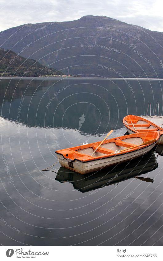 Ruhe am Fjord Natur blau Wasser weiß Ferien & Urlaub & Reisen Sommer Einsamkeit ruhig Erholung gelb Umwelt Landschaft Berge u. Gebirge grau Stimmung
