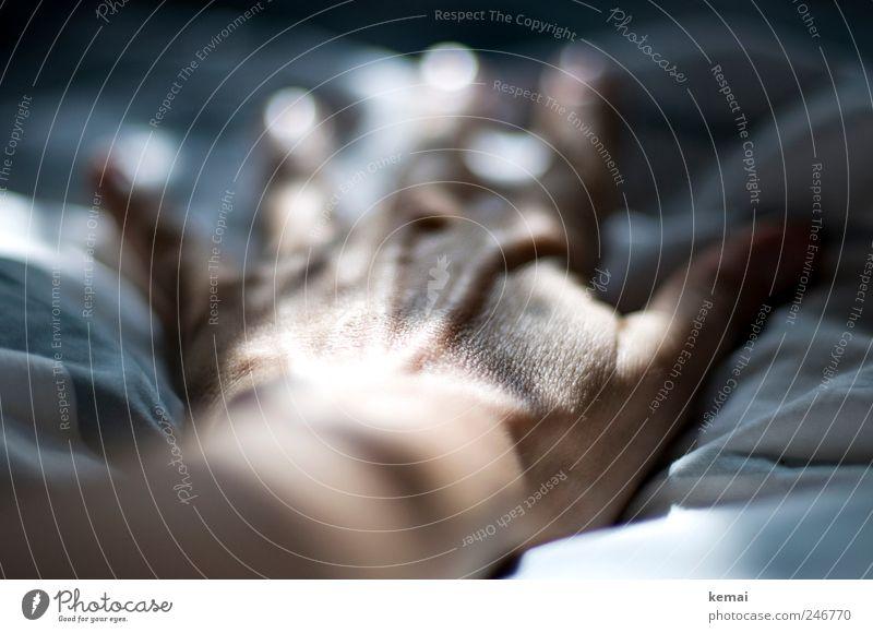 Hand Mensch Frau Erwachsene Leben dunkel grau hell Haut liegen Finger Hautfalten Skelett strecken ausgestreckt Handrücken