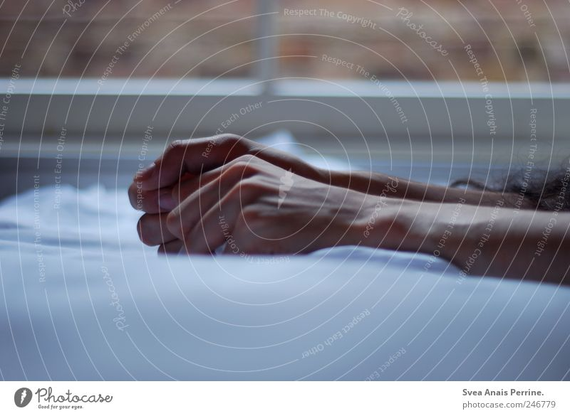 das leben spüren. maskulin Arme Hand Finger 1 Mensch Bett Bettlaken Bettdecke festhalten kalt Akzeptanz Hoffnung Traurigkeit Enttäuschung träumen Farbfoto