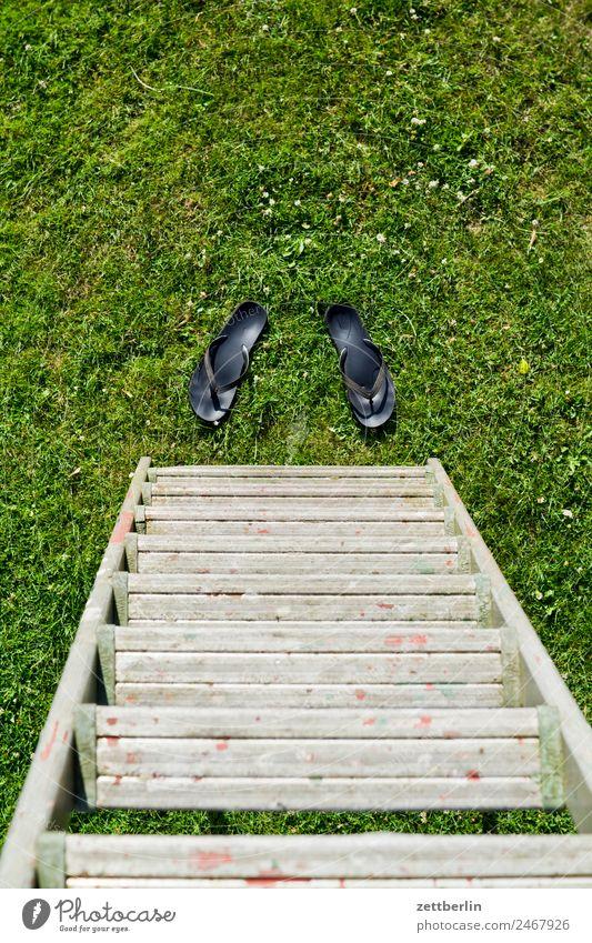 Flipflops an der Leiter Arbeitsschutz Garten Gras klappleiter Schrebergarten Kleingartenkolonie Menschenleer Natur Rasen Sommer stehen steil Textfreiraum Wiese