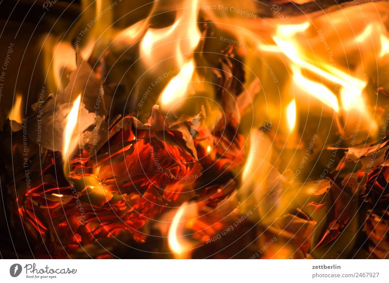 Feuer Brand brennen Flamme Heizung heiß Wärme Brennholz Herd & Backofen Ofenheizung verbrannt Versicherung