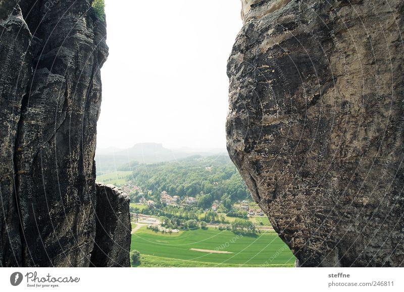 Between a rock and a hard place Wald Berge u. Gebirge Landschaft Umwelt Stein Felsen fest Schlucht Schönes Wetter hart Wolkenloser Himmel Elbsandsteingebirge Elbsandstein
