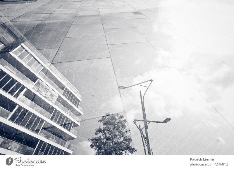 Neues Land Stadt Baum Haus Straße Umwelt Architektur Wege & Pfade Gebäude Lampe Park Freizeit & Hobby Platz Verkehr verrückt neu retro