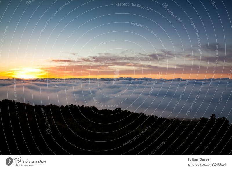 High Sunset Landschaft Himmel Wolken Horizont Sonne Sonnenaufgang Sonnenuntergang Sonnenlicht Sommer Berge u. Gebirge blau Teneriffa Teide über den Wolken weich