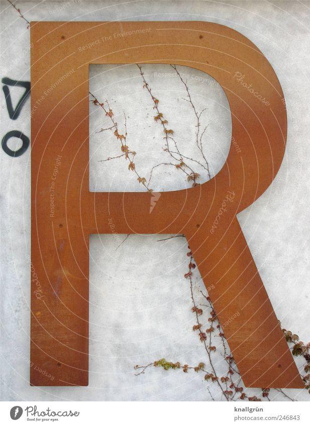 Großes R weiß Pflanze schwarz Wand Graffiti Mauer Kunst braun groß Schriftzeichen Kommunizieren Zeichen Rost Ranke Ausrufezeichen Wilder Wein