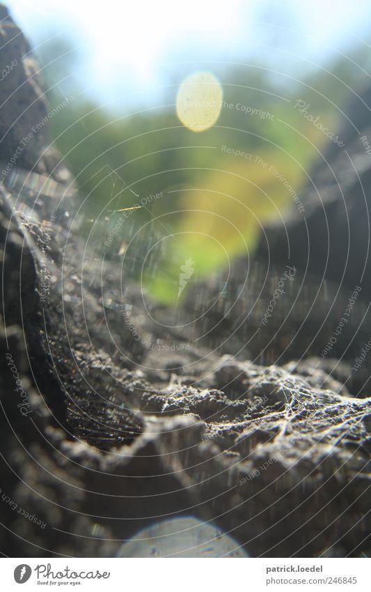 Caught up Natur Urelemente Felsen Berge u. Gebirge Spinne bedrohlich eckig gruselig wild Spinnennetz Felsspalten Lichtpunkt Unschärfe Angst Hoffnung Klettern
