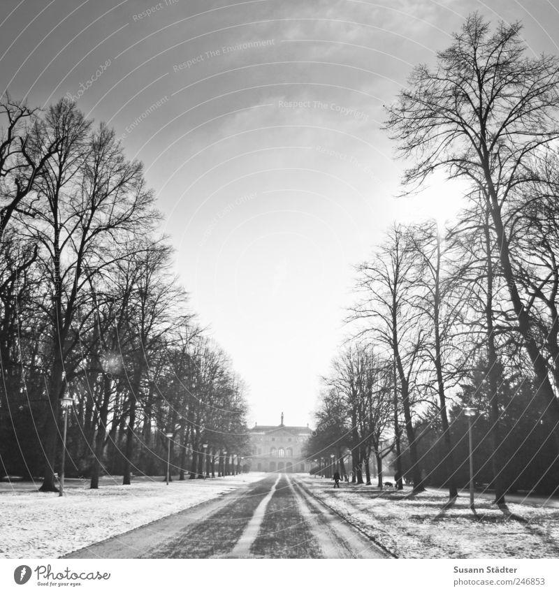 envoy. Winter Einsamkeit kalt Schnee Park fallen Dresden Fußweg Schönes Wetter Orangerie