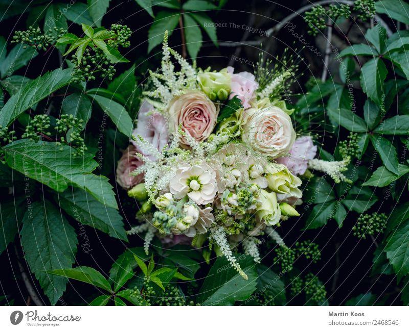 Blumenstrauß elegant Feste & Feiern Muttertag Hochzeit Pflanze Sträucher Rose Blatt Blüte Ornament Gefühle Glück Frühlingsgefühle Vertrauen Geborgenheit