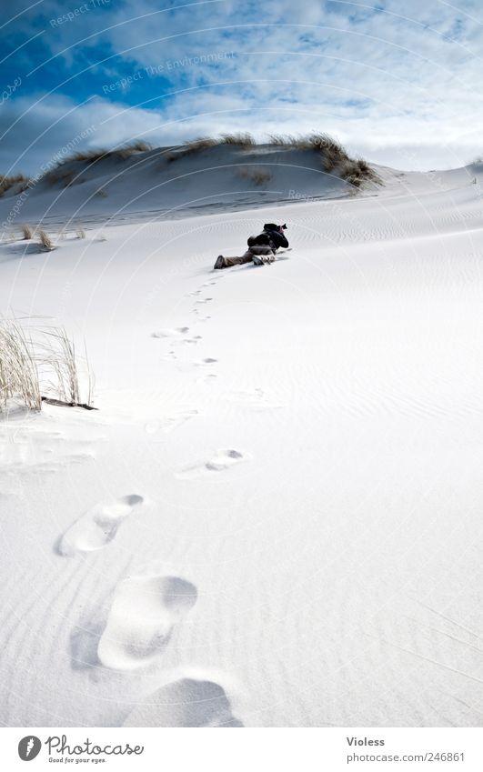 Spiekeroog   fotografieren leben Umwelt Natur Landschaft Sand Himmel Wolken Strand Nordsee entdecken Erholung Fotografieren robben Düne Farbfoto Außenaufnahme