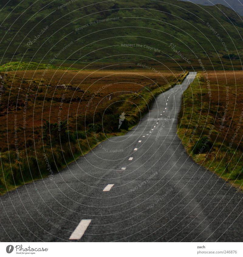 drive left Natur grün Pflanze Einsamkeit Ferne Straße Freiheit Berge u. Gebirge Landschaft Umwelt Gras Wege & Pfade braun Horizont Ausflug Insel
