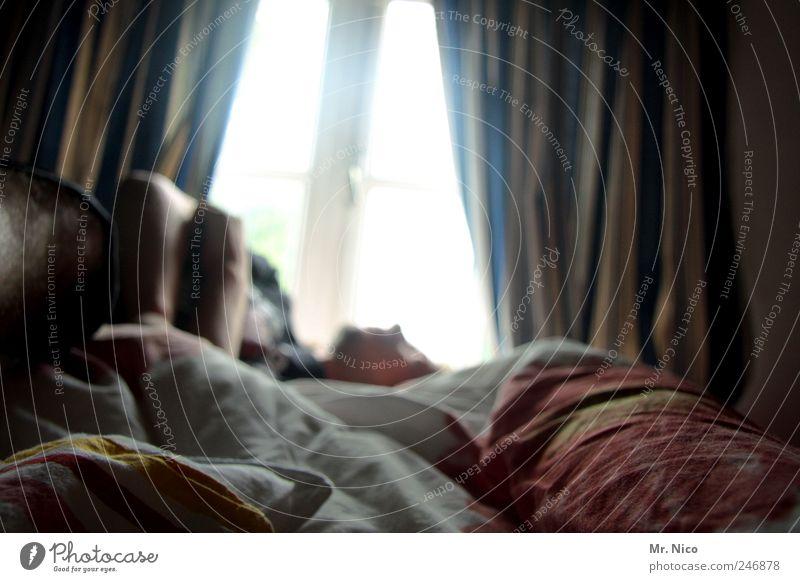 moin moin Erholung ruhig Bett Schlafzimmer Mann Erwachsene liegen schlafen träumen Häusliches Leben kuschlig weich Wohnung Fenster Schlafzimmerblick Vorhang