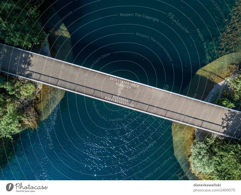 Brücke Umwelt Wasser Bewegung Schwimmen & Baden springen Badesee Verbote auffordern Natur Wasserfahrzeug Sommer gefährlich Risiko Außenaufnahme Tag