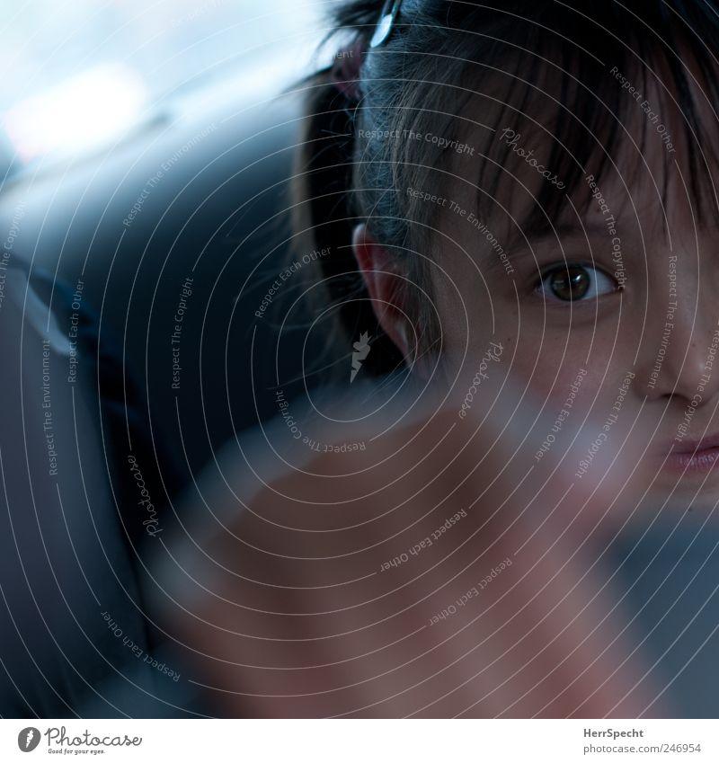 Backseat Princess Kind Mädchen Kopf Haare & Frisuren Gesicht Auge Nase Mund Lippen 1 Mensch 3-8 Jahre Kindheit Autofahren PKW festhalten grau Lächeln Rücksitz
