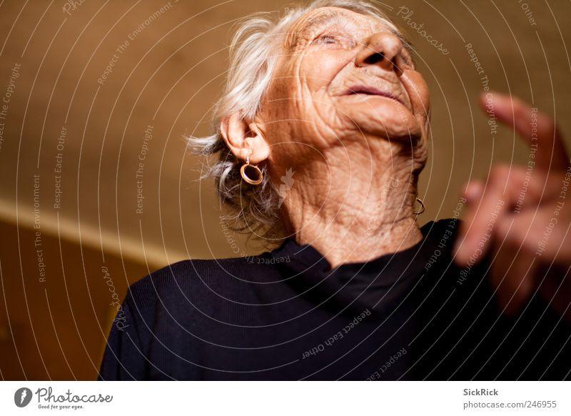 97.3 Mensch Frau alt Erwachsene Senior braun Zufriedenheit natürlich Fröhlichkeit authentisch Hautfalten Freundlichkeit 60 und älter Großmutter Weiblicher Senior zeigen