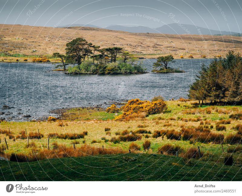 Lough Bofin – Galway Ferien & Urlaub & Reisen Tourismus Ausflug Abenteuer Ferne Sightseeing Sommer Sommerurlaub Insel Wellen Natur Landschaft Himmel Frühling