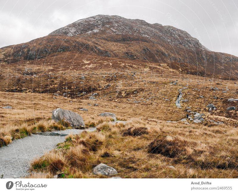 Irland - Diamond Hill Ferien & Urlaub & Reisen Tourismus Ausflug Abenteuer Ferne Sommer wandern Natur Landschaft Pflanze Urelemente Himmel Wolken Frühling