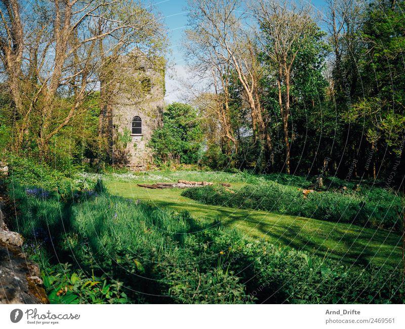 Irland - Renville Castle Ferien & Urlaub & Reisen Tourismus Ausflug Ferne Sightseeing Sommer Sommerurlaub Natur Landschaft Frühling Schönes Wetter Baum Gras