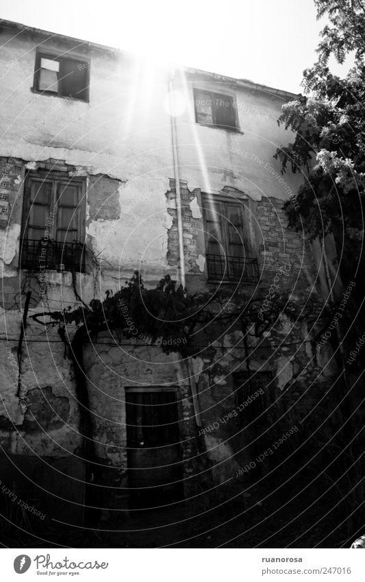 Altstadt Haus Einfamilienhaus Ruine Fassade alt Armut gruselig ausgesetzt glänzend Schwarzweißfoto Außenaufnahme Menschenleer Tag Licht Schatten