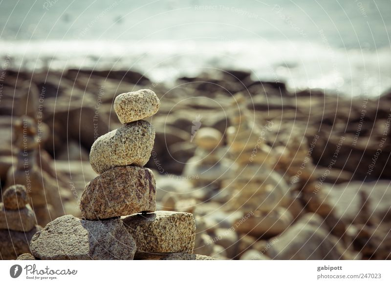 Steine stapeln Freizeit & Hobby Spielen Landschaft Urelemente Sommer Schönes Wetter Küste Meer diszipliniert Ausdauer standhaft Zufriedenheit Genauigkeit