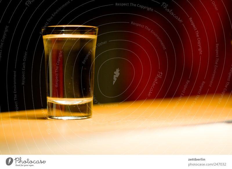 Martini Pflanze Garten Feste & Feiern Getränk Häusliches Leben trinken deutlich Wohnzimmer Alkohol voll Schrebergarten Nachtleben Alkoholsucht