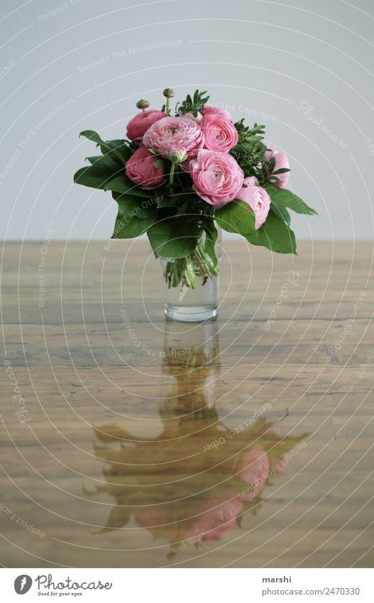 für DICH Natur Pflanze Gefühle Stimmung Glück Sympathie Zusammensein Liebe Verliebtheit Romantik Ranunkel Blumenstrauß rosa Muttertag Geburtstag Überraschung