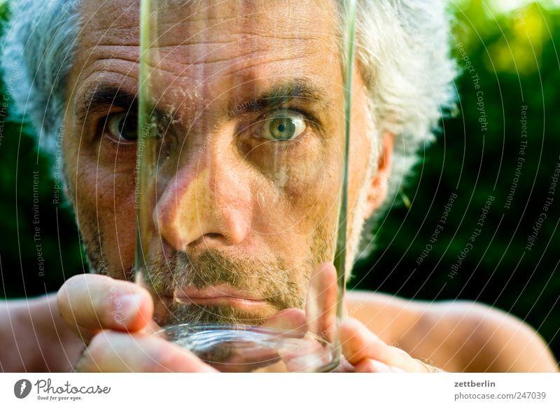 Durchblick Garten maskulin Mann Erwachsene Gesicht Auge Nase Mund 45-60 Jahre Pflanze Glas Blick Wachstum Schrebergarten Starrer Blick direkt Farbfoto