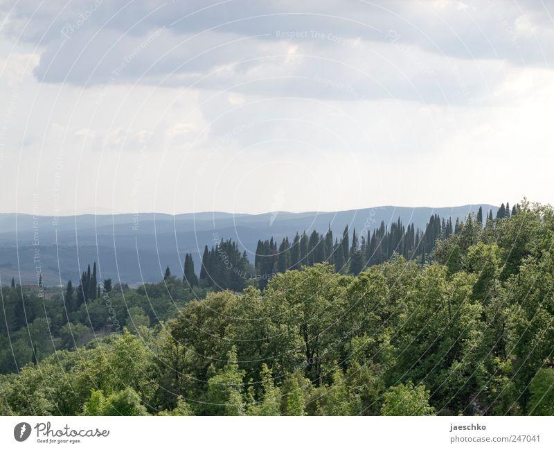 Landschaft #7665 Natur Baum grün Ferien & Urlaub & Reisen Wolken Wald Landschaft Umwelt Klima Hügel Unwetter Schönes Wetter schlechtes Wetter Toskana Gewitterwolken mediterran