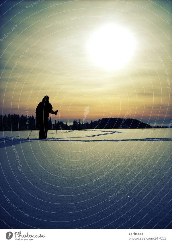Winter Freizeit & Hobby Abenteuer Schnee Winterurlaub Sport Skifahren Skipiste Mensch maskulin Mann Erwachsene 1 Umwelt Natur Landschaft Himmel Wolken Sonne