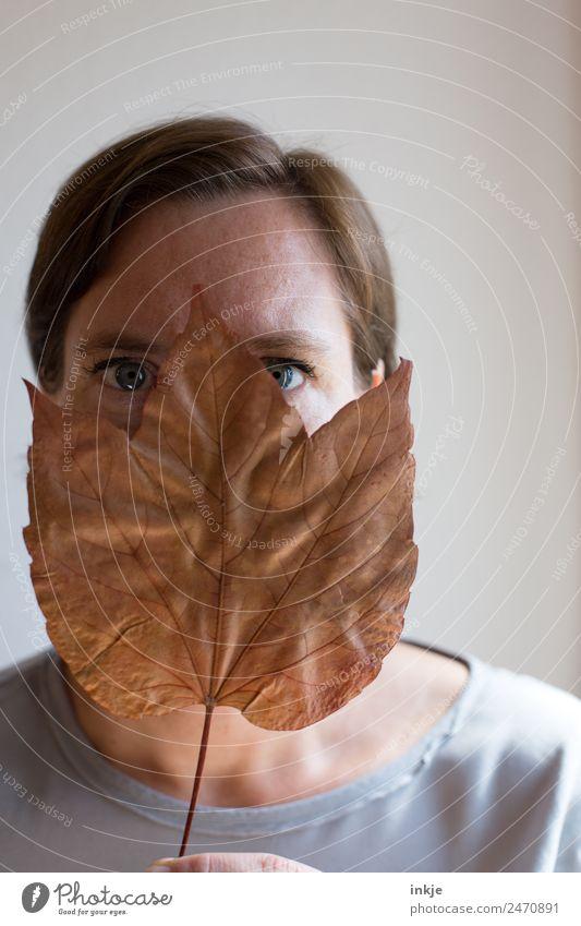 Blatt vorm Mund Frau Erwachsene Leben Gesicht blau Auge 1 Mensch 30-45 Jahre Blick luschern verstecken braun trocken gepresst Farbfoto Gedeckte Farben