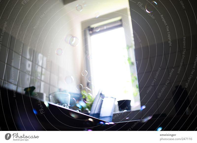 Seifenblasen grün schön blau Freude Spielen Freiheit Fenster Zufriedenheit elegant Wohnung Freizeit & Hobby frei Fröhlichkeit rund Küche einzigartig