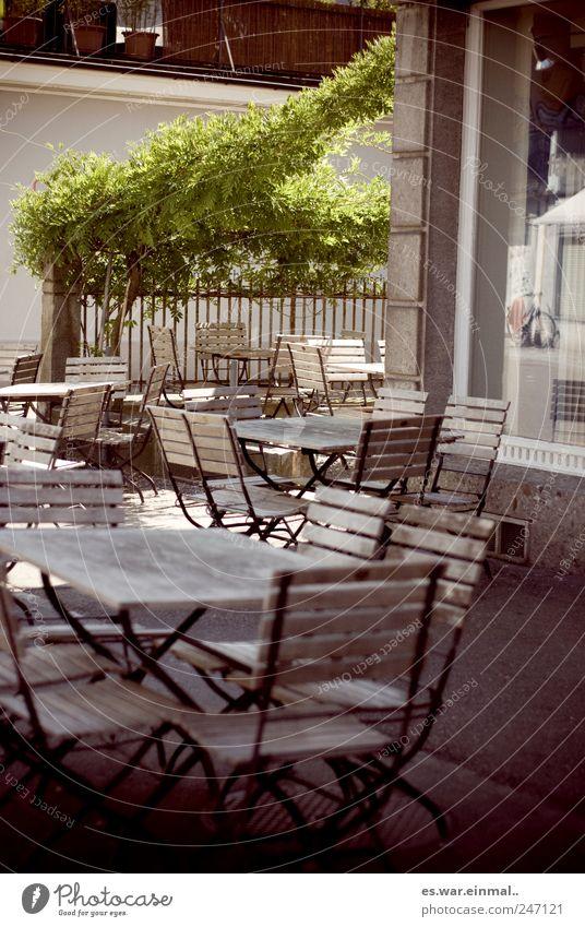 frühstücken gehen. Pflanze sitzen Café Stuhl Tisch leer gemütlich Außenaufnahme Morgen