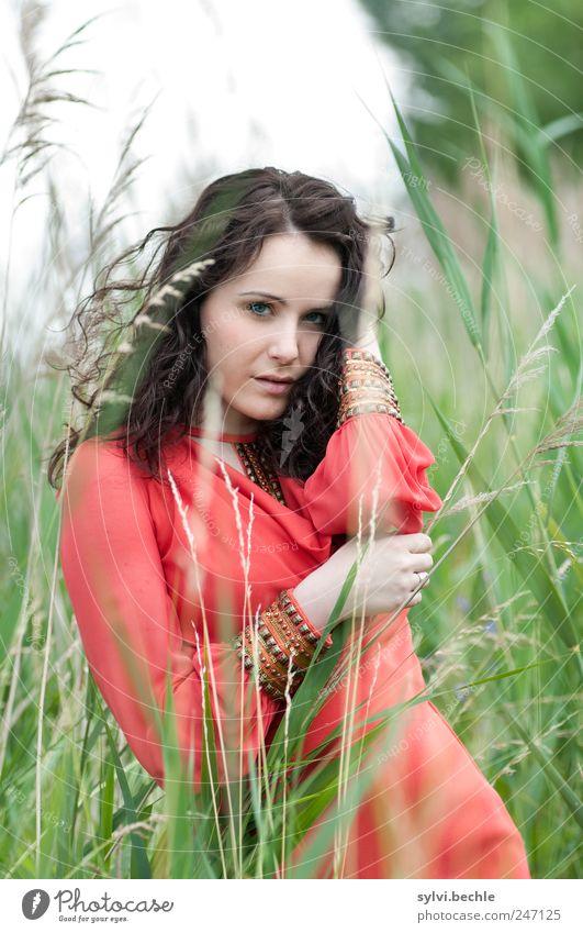 girl Mensch Natur Jugendliche schön Pflanze rot Sommer Gesicht Leben feminin Wiese Umwelt Gras Haare & Frisuren Stil Erwachsene