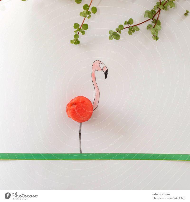 Summer vibes Frucht Melonen Freizeit & Hobby zeichnen Sommer Blatt Wildtier Flamingo 1 Tier Papier Dekoration & Verzierung stehen warten Fröhlichkeit lecker