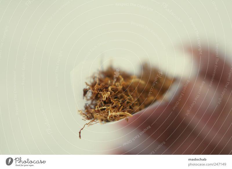Frühstück Rauchen Zigarette Joint ungesund Tabak Drogensucht selbstgedrehte Zigarette