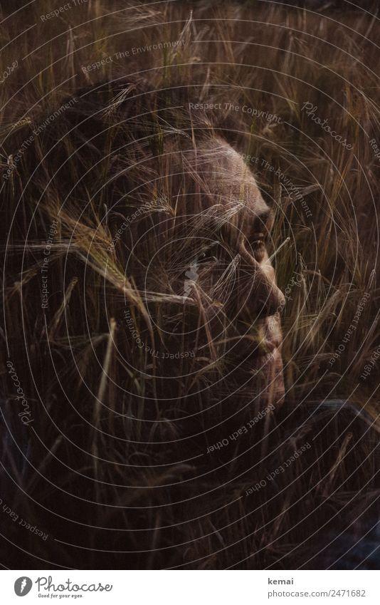Den Kopf voll Lifestyle Sinnesorgane Erholung ruhig Freizeit & Hobby Abenteuer Freiheit Mensch feminin Leben Gesicht 1 30-45 Jahre Erwachsene Natur Sommer