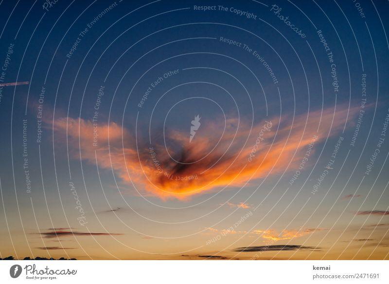 Feuerfarbene Wolke Himmel Natur Sommer blau schön rot Erholung Wolken ruhig Ferne Wärme Umwelt außergewöhnlich Freiheit orange wild
