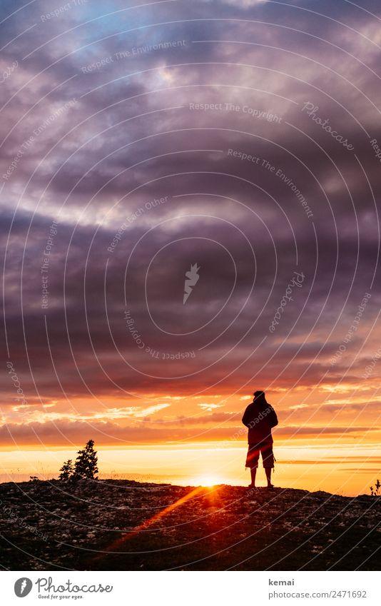 Sommerabende Lifestyle Wohlgefühl Zufriedenheit Sinnesorgane ruhig Freizeit & Hobby Ausflug Abenteuer Ferne Freiheit Mensch maskulin Leben 1 Natur Himmel Wolken