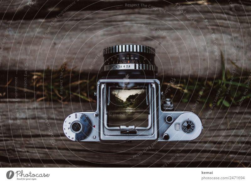 Auf den Schienen alt Erholung ruhig dunkel Holz Gras außergewöhnlich Freiheit wild Verkehr Abenteuer Fotografie historisch Wohlgefühl harmonisch Fotokamera