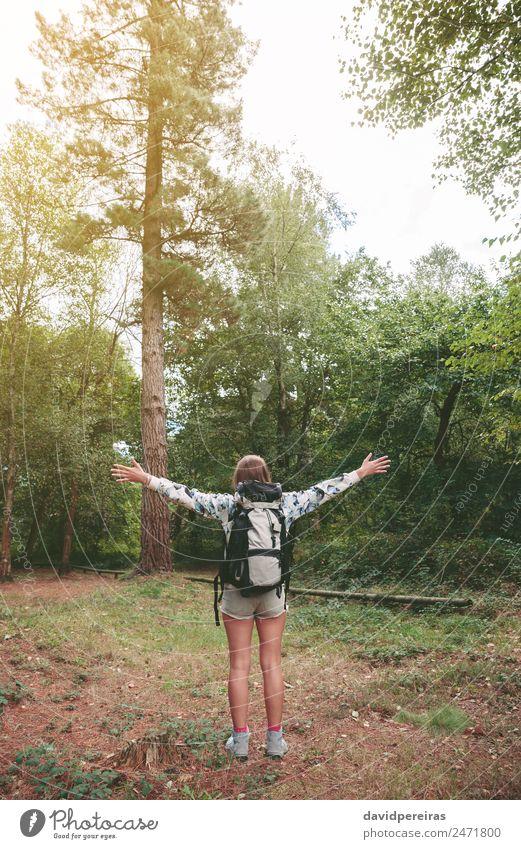 Wanderin mit Rucksack, die ihre Arme in den Wald hebt. Lifestyle Freude Glück Erholung Freizeit & Hobby Ferien & Urlaub & Reisen Ausflug Abenteuer Freiheit
