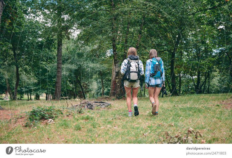 Zwei Freundinnen mit Rucksäcken beim Gehen Lifestyle Freude Glück Freizeit & Hobby Ferien & Urlaub & Reisen Ausflug Abenteuer Camping Sommer Berge u. Gebirge