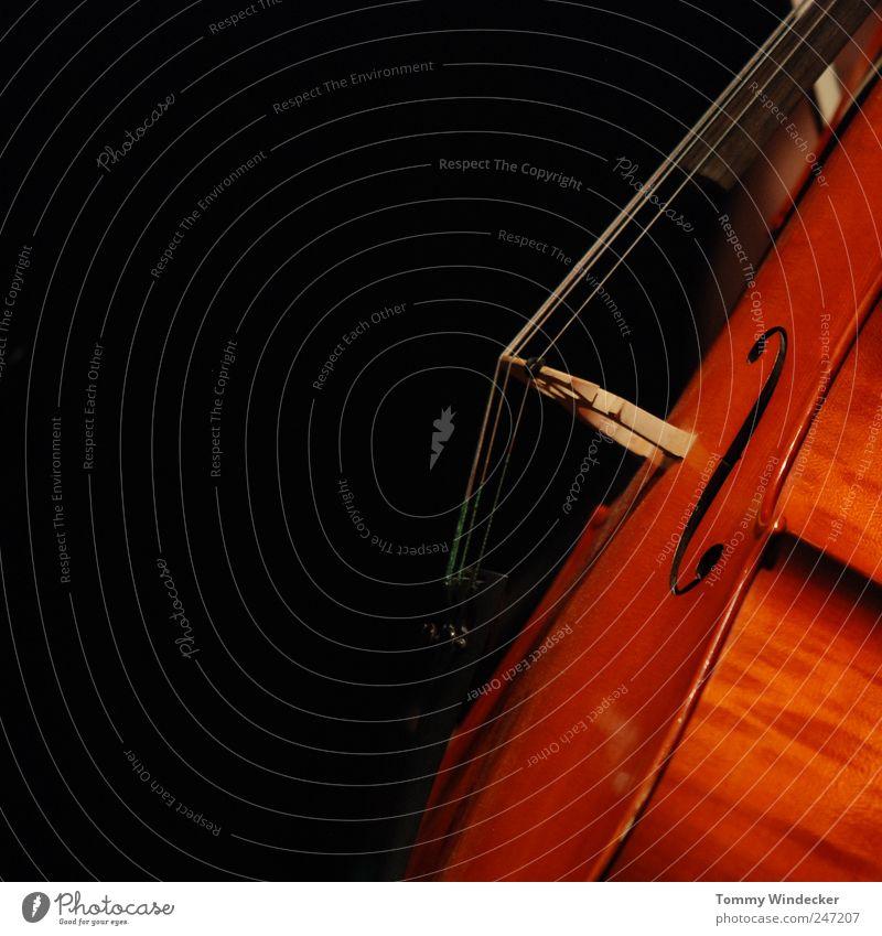Symphonie deux schön Freude Spielen Holz Musik Stimmung braun streichen Leidenschaft Veranstaltung Bühne Musiknoten Künstler Musikinstrument Musiker Saite