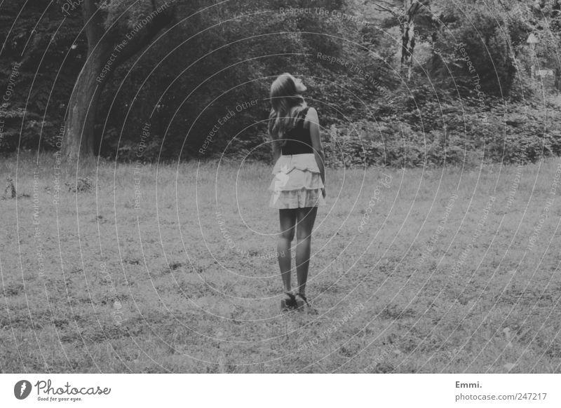 es gibt kein wunder für den, der sich nicht wundern kann. Mensch Jugendliche Baum feminin Gras Denken Park warten stehen Sträucher Neugier dünn Vertrauen Rock Locken brünett