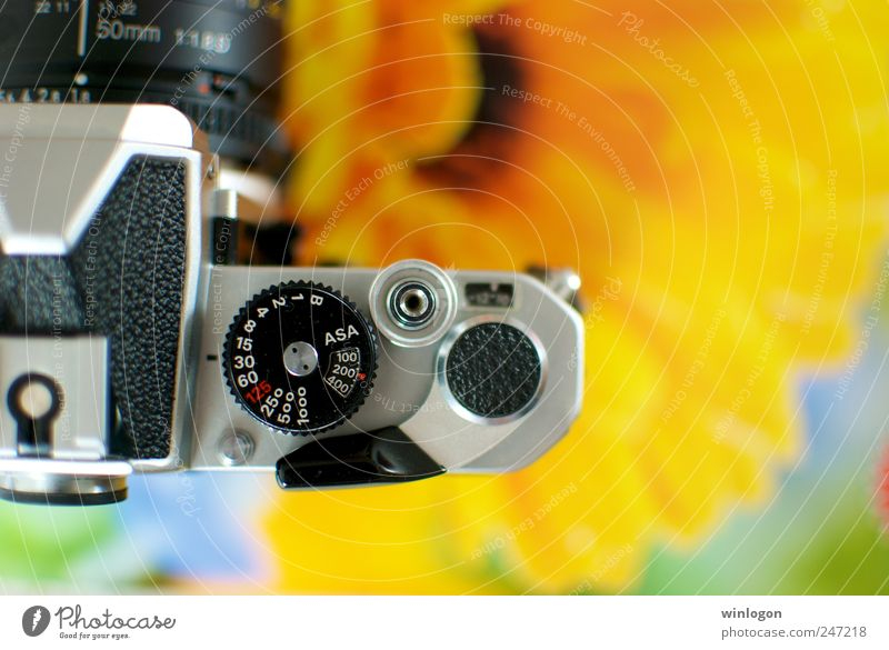 happiness is a loaded nikon alt Stil Denken Metall Kunst elegant Fotografie wandern Design Freizeit & Hobby Lifestyle Filmmaterial gut Technik & Technologie