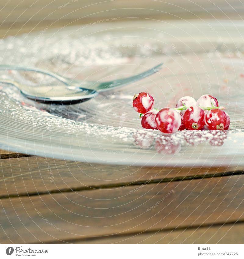 Marillenknödel an frischen Sommerbeeren Frucht Dessert Geschirr Teller Besteck Gabel Löffel genießen hell lecker saftig sauer rot weiß Lebensfreude Puderzucker