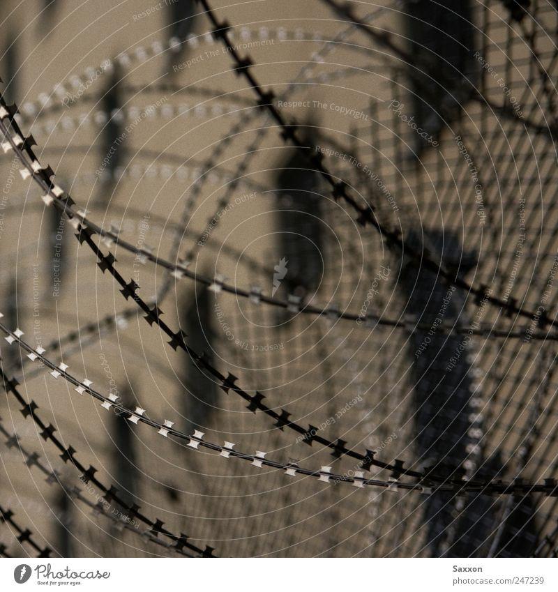 Stacheldraht kalt dunkel Wand Mauer Linie Metall Angst Hoffnung trist Gewalt Denkmal Schmerz Zaun Verzweiflung Gitter Justizvollzugsanstalt