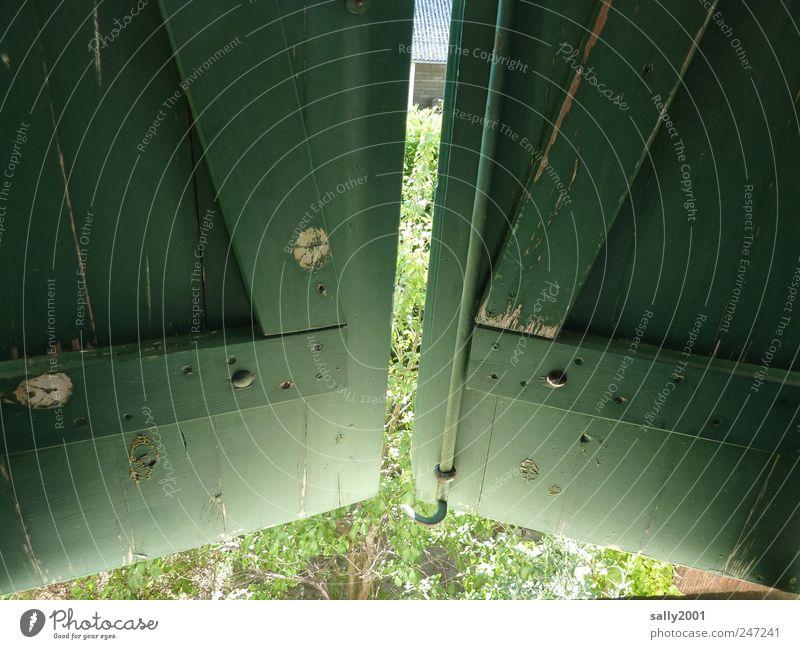 Hinter grünen Läden Fenster Holz geschlossen Häusliches Leben Neugier beobachten geheimnisvoll entdecken Fensterladen Hemmung